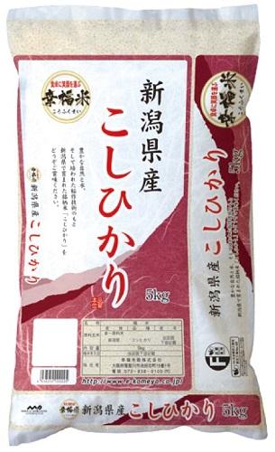 【新潟県】新潟県産こしひかり 5kg×1セット