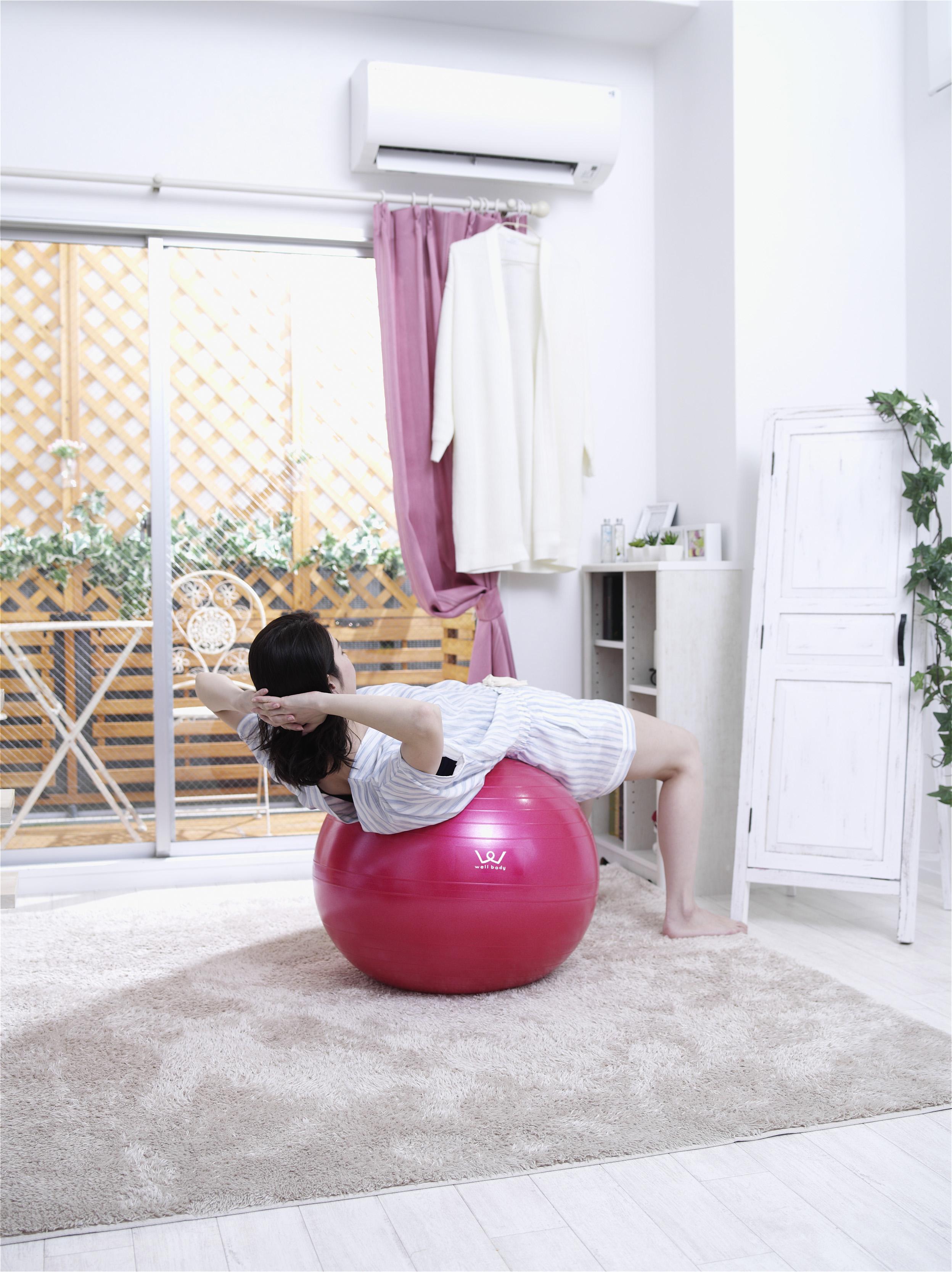 【アルインコ】エクササイズボール 55cm 球径約55cm ピンク