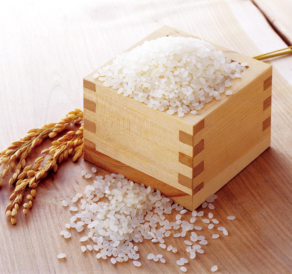 【新潟県】魚沼産こしひかり 特別栽培米 6kg(3kg×2)