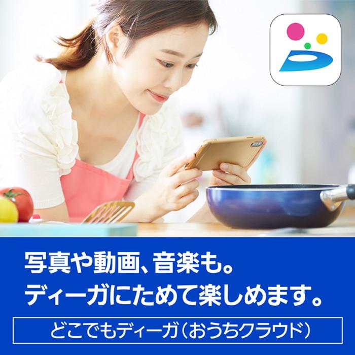 【パナソニック】DMR-2W51 ブルーレイディスクレコーダー DIGA(ディーガ) 500GB